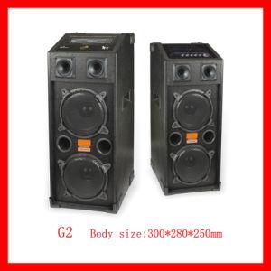 Professional Stage Speaker (G2)