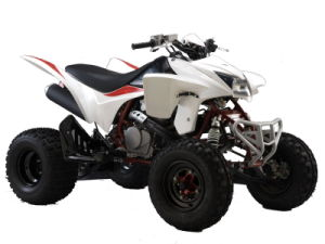 SPORT ATV 400CC quad bike pictures & photos