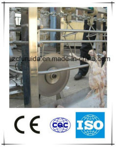 New Chicken Feather Peeling or Removal Machine (Stainless Steel) pictures & photos