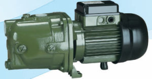 Good Quality Self-Priming Jet Pump (DAB Pump) with CE Approved pictures & photos