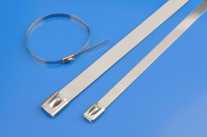 Stainless Steel Cable Ties pictures & photos