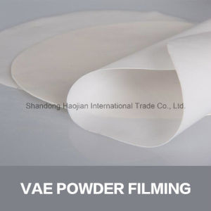 Polymer Mortar Additive Redispersible Polymer Powder Chemicals pictures & photos