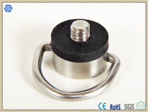 Factory Direct Carmera Screw pictures & photos