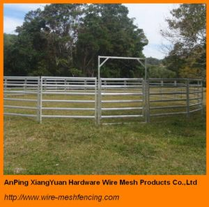 Hot Dipped Galvanized Livestock Cattle Panels Australia Standard pictures & photos