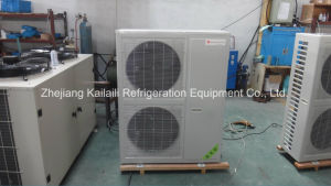 Air Cooled Closed Compressor Condensing Unit with Ce for Cold Storage Klzbd-6 pictures & photos