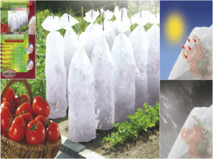 PP Nonwoven Fabric for Plant Cover pictures & photos