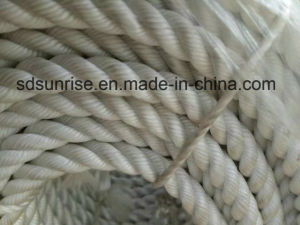 Powerful PP Rope with Lead pictures & photos
