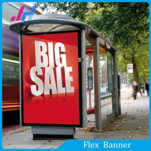 Advertising Material PVC Backlit Flex Banner (610GSM) pictures & photos