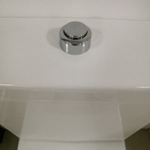 Australian Standard Sanitary Ware Watermark Approval Washdown Disabled Toilet (6018) pictures & photos