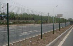 Wire Mesh Fence Eurofence From Anping Factory pictures & photos