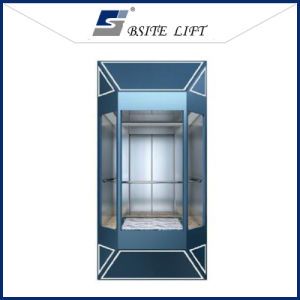 Sightseeing Elevator Residential Lift with Good Quality Glass