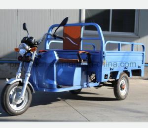 1000W Electric Tricycle with Shipment Cargo pictures & photos
