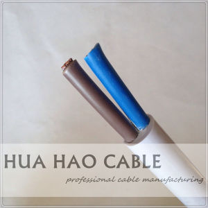 2, 3, 4, 5core H05VV-F Rvv Cable with SGS Approved pictures & photos