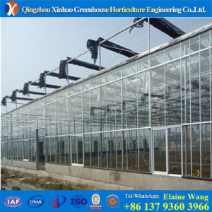 Glass Greenhouse with Good Cooling System pictures & photos