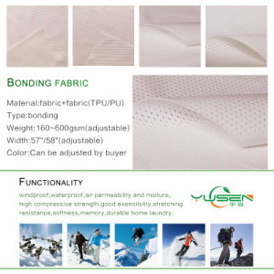 Hot Sales Shrink-Resistant Bonded Fabric for Sofa Home Textile pictures & photos