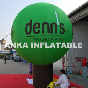 Air Blown Type Inflatable Stand Ground Balloon pictures & photos