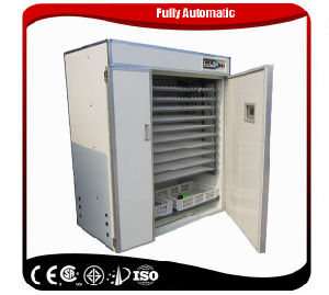 New Arrival Turkey Egg Incubator Professional 3168 Eggs pictures & photos