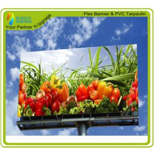 PVC Laminated Frontlit Flex Banner pictures & photos