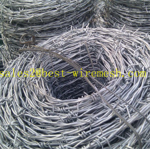 Hot-Dipped Galvanized Razor Barbed Wire/Barbed Wire for Fence pictures & photos