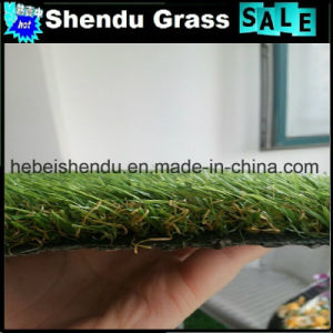 Green Plastic Grass 20mm for Home Backyard pictures & photos