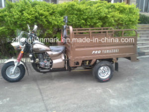 Customizable Tricycle for Passenger or Goods pictures & photos