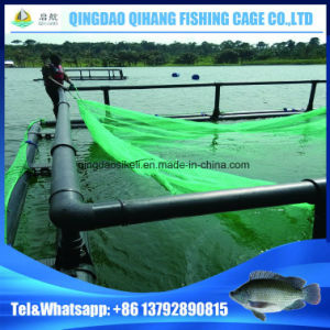 Lake and River Knotless Net Knotted Net HDPE Aquaculture Fish Cage pictures & photos