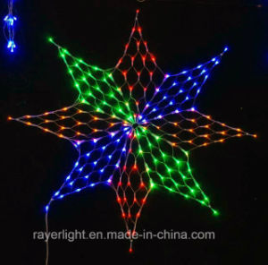 LED Net Light Ideal Decoration Colorful pictures & photos