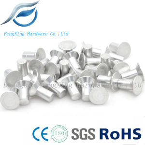Aluminum Countersunk Head Solid Rivets for Advertising Sign pictures & photos