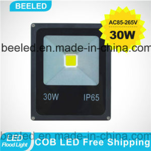 30W Blue Outdoor Lighting Waterproof Lamp LED Flood Light pictures & photos
