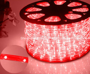 LED Rope Light/Outdoor Light/LED Strip Light/Neon Light/Christmas Light/Holiday Light/Hotel Light/Bar Light Round Two Wires Warm White 25LEDs 1.6W/M LED Strip pictures & photos