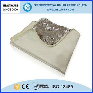 Resuable Pet+Nonwoven Pet Training Pad pictures & photos