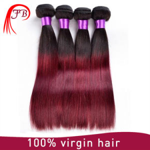 Factory Price Ombre Hair 1b 99j Human Hair Weaving pictures & photos