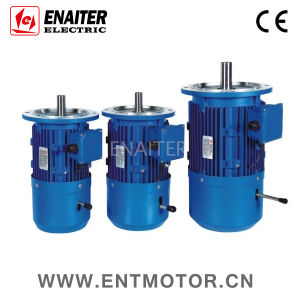 CE Approved IP55 Electrical AC Brake Motor pictures & photos