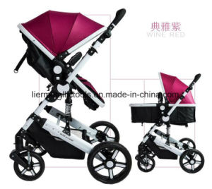 Foldable Carrying Trolley Stroller for Baby pictures & photos