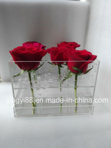 New Custom Made Clear Waterproof Acrylic Flower Box pictures & photos