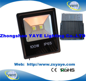 Yaye 18 Hot Sell COB 10W LED Flood Light / COB 10W LED Floodlight / 10W LED Garden Light with Ce/RoHS pictures & photos