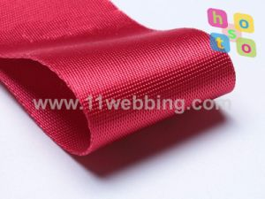 Microgroove Imitation Nylon Plain Webbing for Bag Accessories pictures & photos