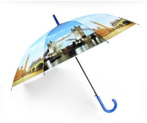Colour Long Umbrella pictures & photos