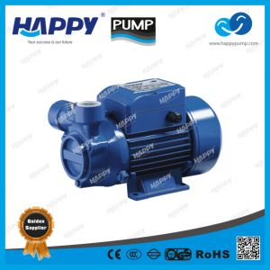 Vortex Water Electric Pump (HLQ) pictures & photos
