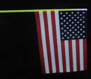 Glow Flag pictures & photos