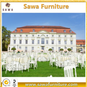 Comfortable Wedding / Napoleon / Hotel Chair Wholesale pictures & photos