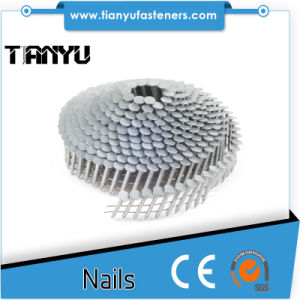 "1-1/4"" Stainless Steel Coil Roofing Nail, Ring (1200PS) 304stainless Steel pictures & photos"