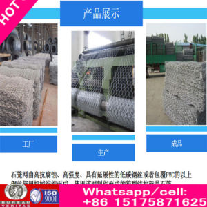 Alibaba China Factory Supply Anti-Corrosive Beautiful Form Sale Cheap Retaining Wall Metal Wire Mesh Gabion Box Stone Cage pictures & photos