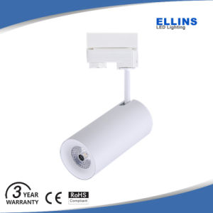 Citizen 20W 30W COB LED Track Light for Cloth Shops pictures & photos
