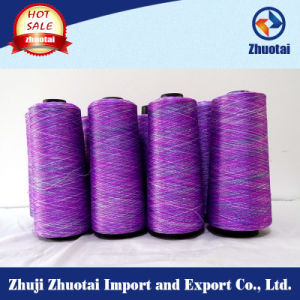 150d/144f Designed Polyester Space Dyed Yarn for Uppers pictures & photos