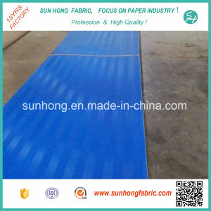 Polyester Fabrics/Screen /Sludge Dewatering Filter Belt /Mesh pictures & photos