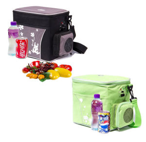 Portable Mini Fridge 6 Liter with DC12V for Cooling and Warming Application pictures & photos