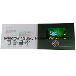 LCD Screen Video Company Catalogue pictures & photos