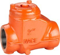 Cast Steel Threaded End Swing Check Valve