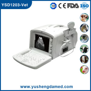 Full Digital Portable Veterinary Ultrasound Scanner pictures & photos